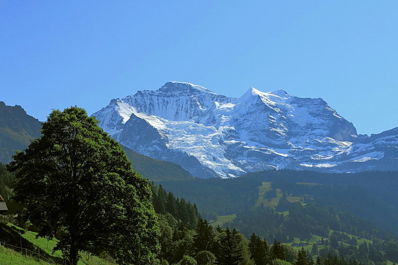 Jungfrau met Silberhorn - Dit is even de laatste van de Zwitserland serie.<br /> Zijn nu op de laatste dag van de vakantie. Toen een tocht van Lauter