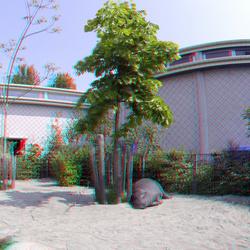 Blijdorp Diergaarde Rotterdam 3D