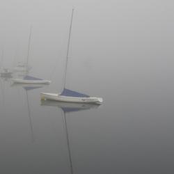 misty Loch Lynn
