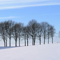 sneeuwlandschap Zuid Limburg