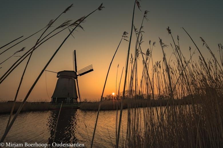 Schermermolen bij zonsondergang
