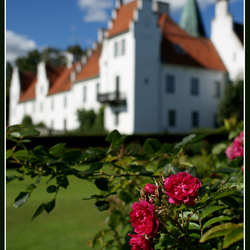 Castle of Roses