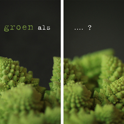 Raadplaat: Zo groen als... ?