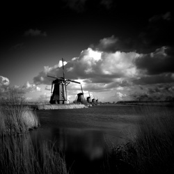 Kinderdijk - Black and White