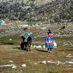 Reisgezelschap in de Andes