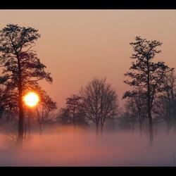 Avondzon in de mist