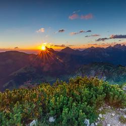 Good Morning Tyrol