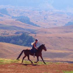 Te paard door Drakensbergen np