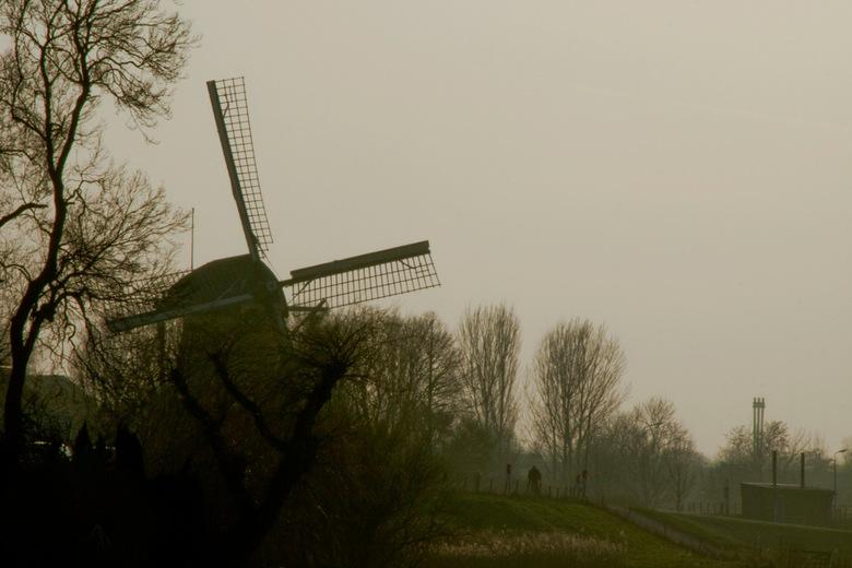 Molen bij Heinenoord  - Je ziet m haast niet: de eenzame fietser...