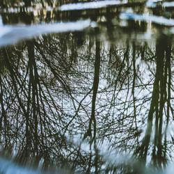 Reflectie in ijs