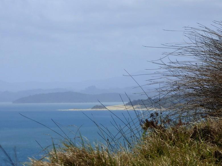 NZ-NI-Westcoast - Een van mijn betere kiekjes. Ik sta open voor opbouwende kritiek.