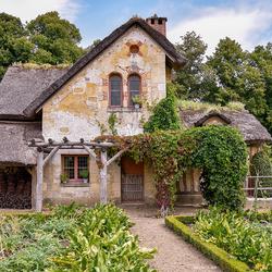 A_Cottage_garden