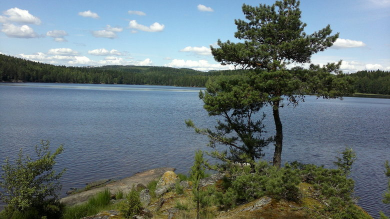 2012-07-05-306.jpg - Tijdens een middag kanoen op het meer bij de camping.