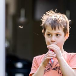 Zweefvlieg vs jongen