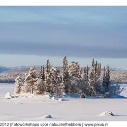eiland in de sneeuw