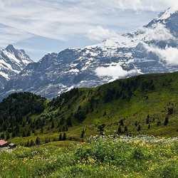 Zwitserland Mannlichen 2
