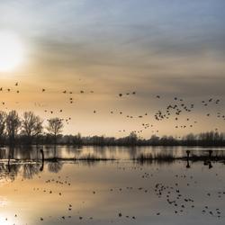 Zon aan de horizon bij Fortmond