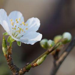 Heerlijk lentegevoel