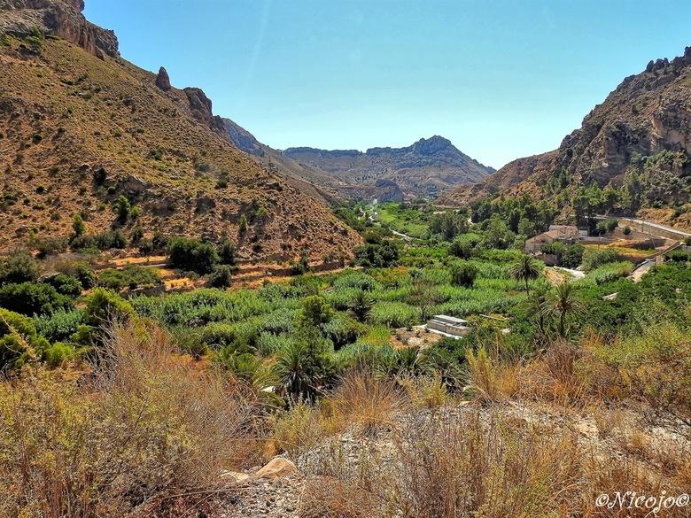 Ricote-vallei. - Hier onderin het dal stroomt de rivier de Segura. Goed te zien de weelderige groei van de bomen.<br /> De vlakte langs de rivier, is