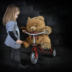 teaching my teddy