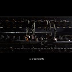 HasardCheratte 9