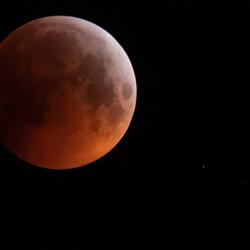 Sanguinem luna