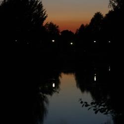 avond in het park