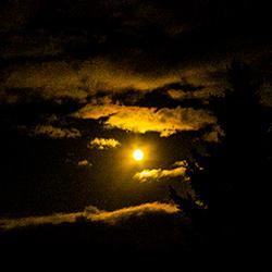 volle maan .jpg