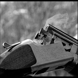smoking gun (dubbelloops)..