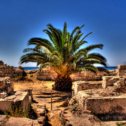 Big Pineapple between the baths of the romans..