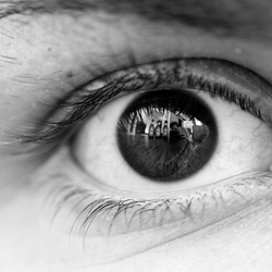 Captured In The Eye