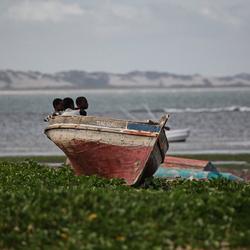 Malindi,kenia
