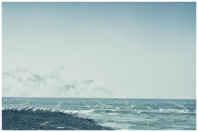 """1,3 seconde aan het Noordzeestrand - Oh, ook gezien van de horizon scheef staat? Ik laat hem toch staan...<img  src=""""/images/smileys/wilt.png""""/><br />"""