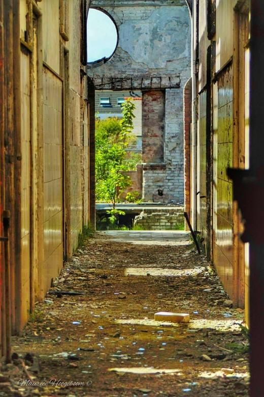 Hallway into destruction -