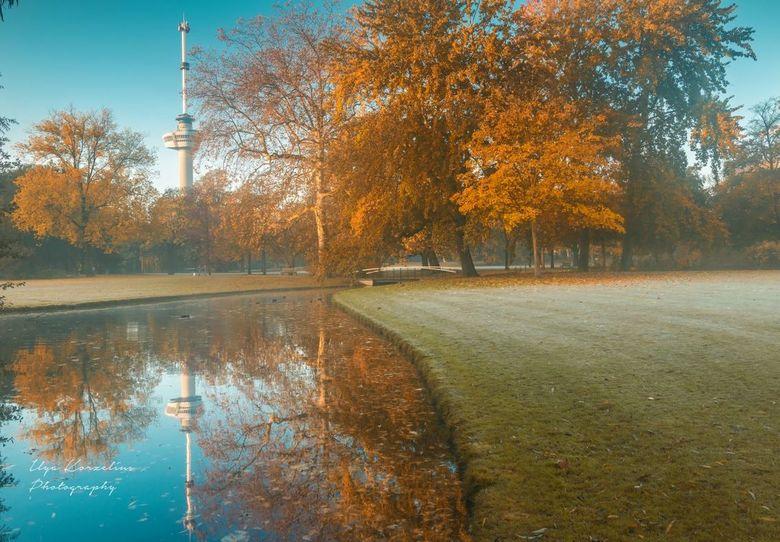 Mist in het Euromast park -