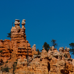 Bryce canyon - Man & vrouw