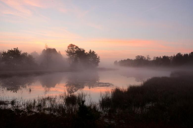 ochtendrust - ochtend strabrechtse heide- (4).jpg