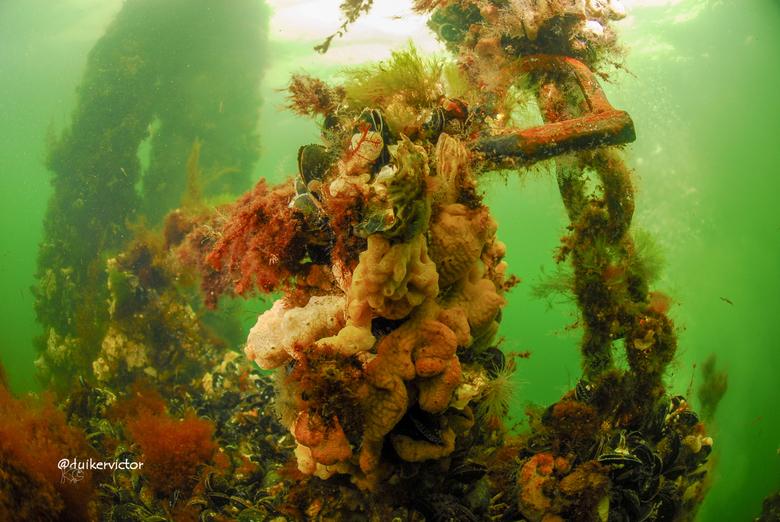 Oud gemaal onder water - Een oud gemaal onderwater in zeeland, ook te zien op instragram bij @duikervictor