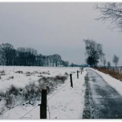 Winter Walk Belgium