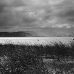 Zicht op de duinen van Pyla