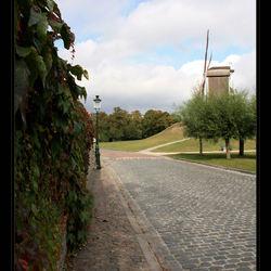 Brugge VI