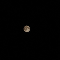only the (full) moon