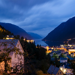 Odda by night
