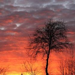 Zo mooi kan Drenthe zijn