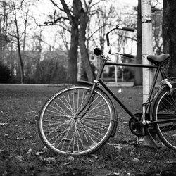Stilleven: de fiets