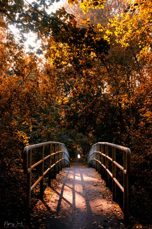 Een bruggetje, herfst