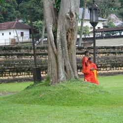 Monniken rustig bij tempel