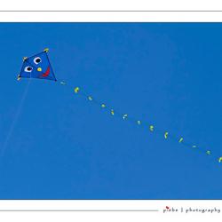 Vliegeren 3