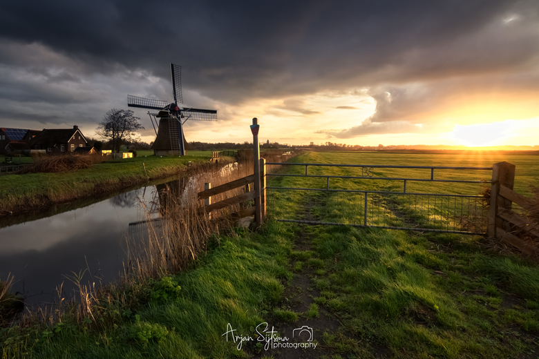 Hollands landschap I -