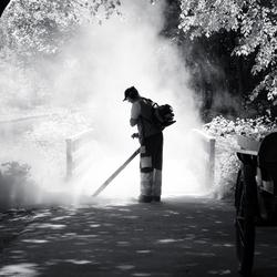Dust & lightbeams